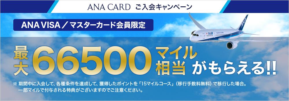 ANA VISA/MASTERカード限定キャンペーン 最大65500マイル相当がもらえる